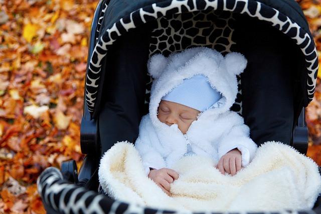 Neugeborenes im Kinderwagen