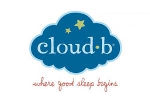 Cloudb_Logo_2012
