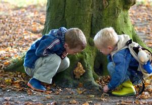 Kinder baumstamm natur