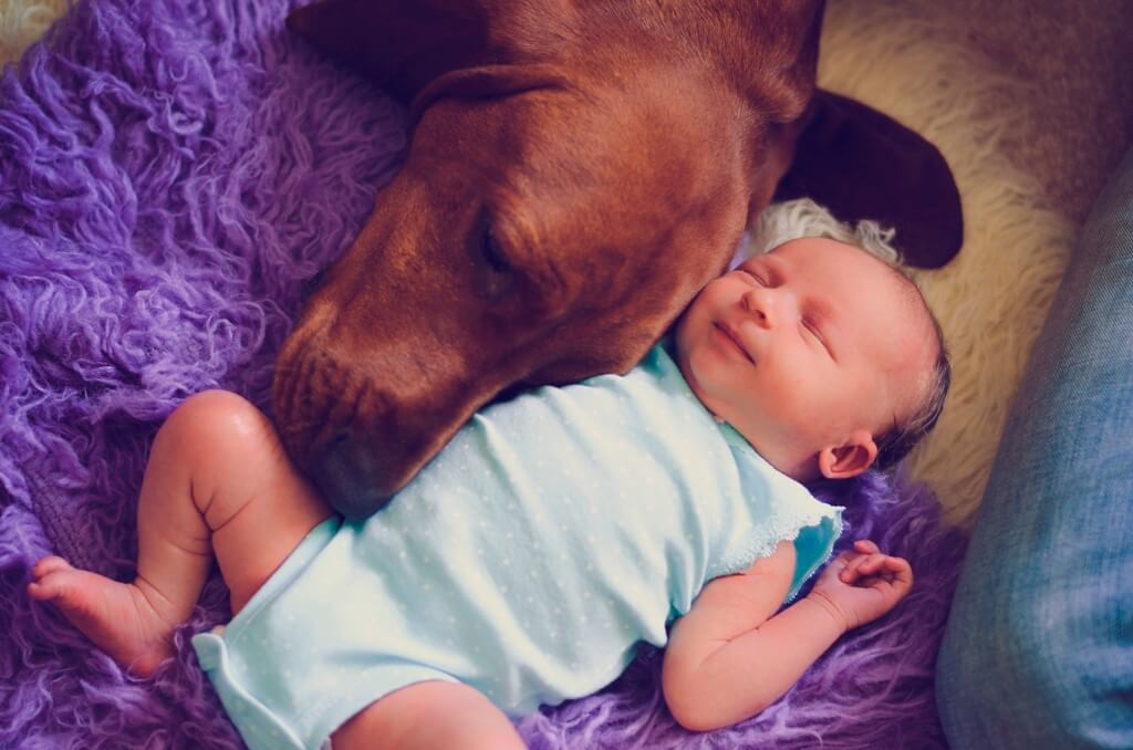 Baby und Hund schlafen